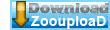 Download   B 17   A Fortaleza BDRip AVI Dual Áudio + RMVB Dublado