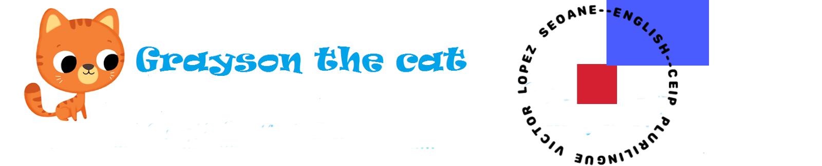 GRAYSON THE CAT