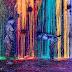 Perdido no paraíso das cores