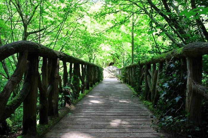 Chaumont sur loire festival des jardins le vallon des for Jardin de chaumont 2015 tarif