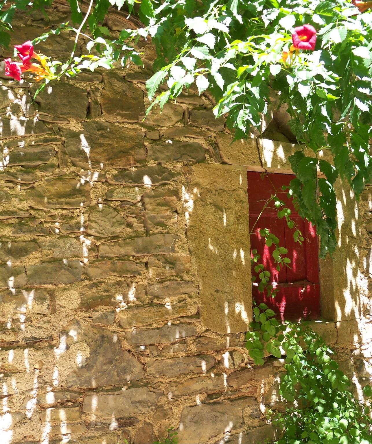 Nature splendide 17 02 2012 l 39 criture pouvoir des for Miroir des joyaux