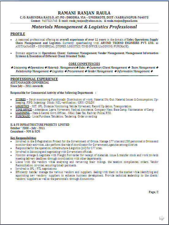 atractive resume sample in word documet  mba