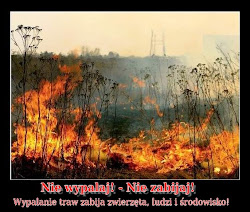 Wypalanie traw zabija!