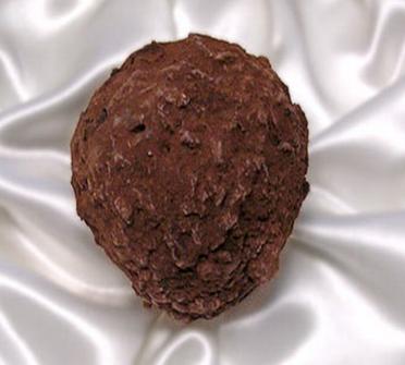la madeline au truffe chocolate truffle chocopologie