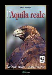 Pubblicazioni rapaci: Aquila reale