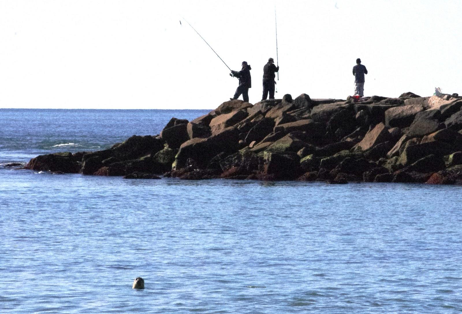 Roger Wheeler State Beach Thode Island