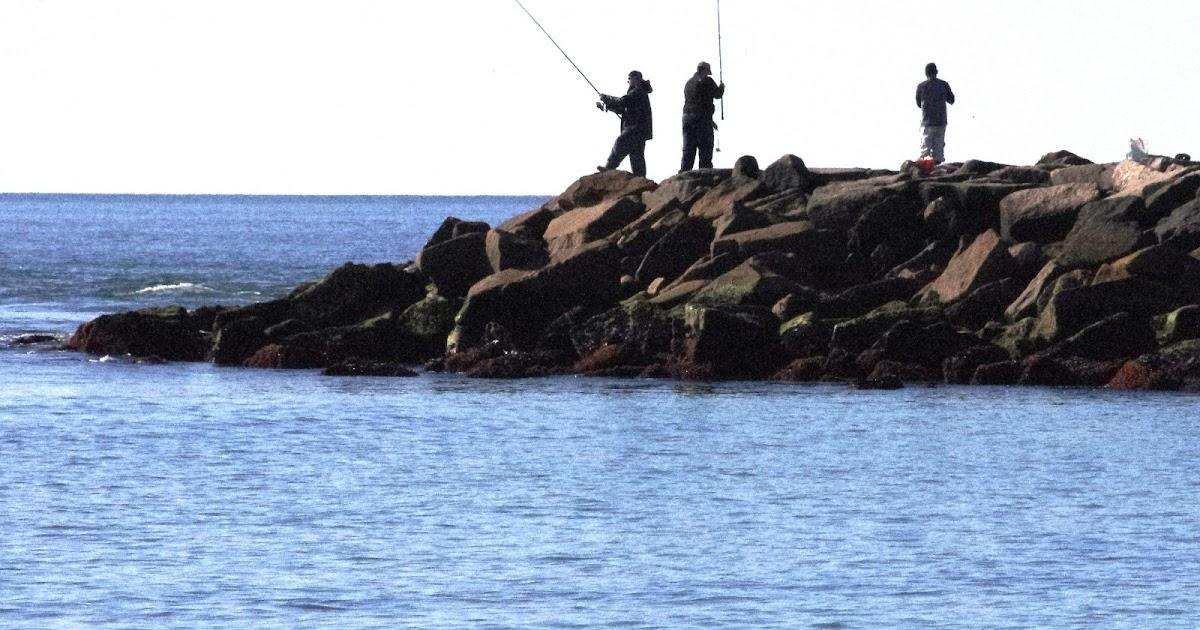 Progressive charlestown free salt water fishing on sunday for Ri fishing regulations