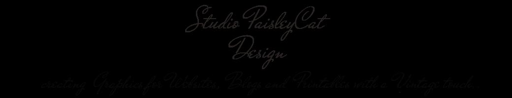 Studio PaisleyCat