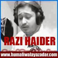http://ishqehaider.blogspot.com/2013/11/razi-haider-nohay-2014.html