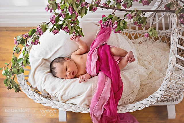 Newborn Photos - Brampton, ON