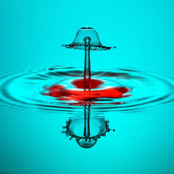 http://1.bp.blogspot.com/-j3X1GUL5nQU/Taw_ReszQaI/AAAAAAAAR04/gazY5uV84Uo/s1600/amazing_highspeed_photography_640_12.jpg