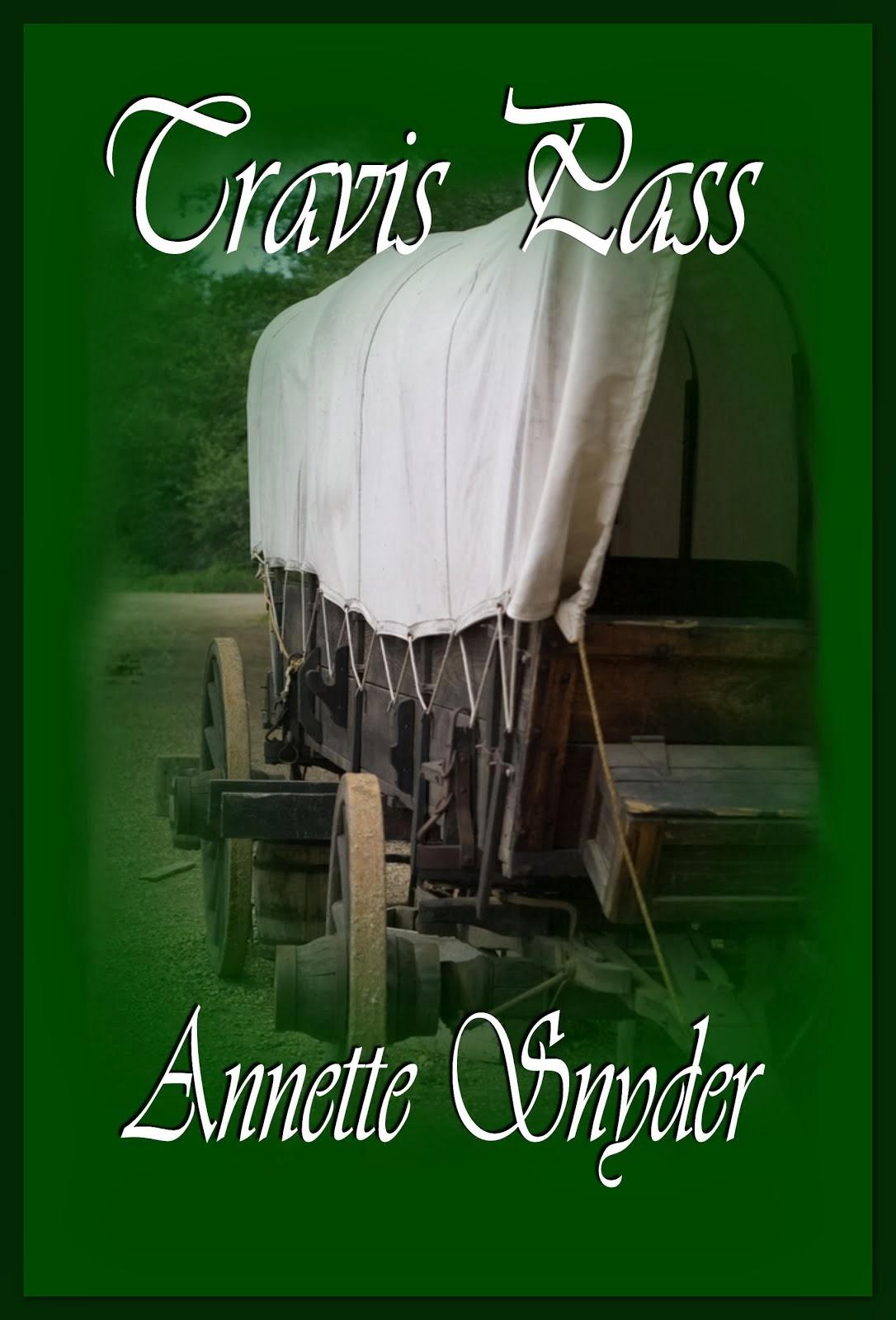 Annette Snyder's 1800's Mid-Western Series