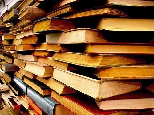 Libros Vivos