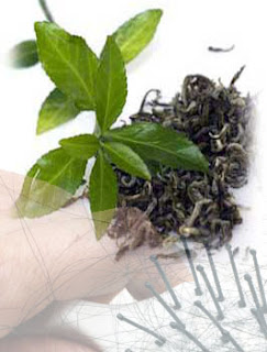 Green Tea Benefits for Hair, Green Tea Benefits for Prevent Hair Loss
