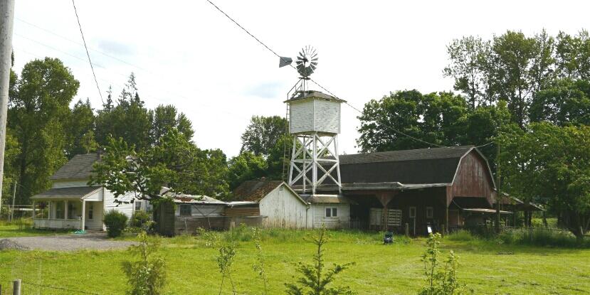 McKenzie River homestead