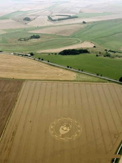 foto aérea de un círculo en los campos de cultivo