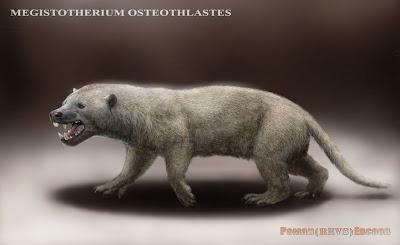 creodonta hyaenodontidae Megistotherium