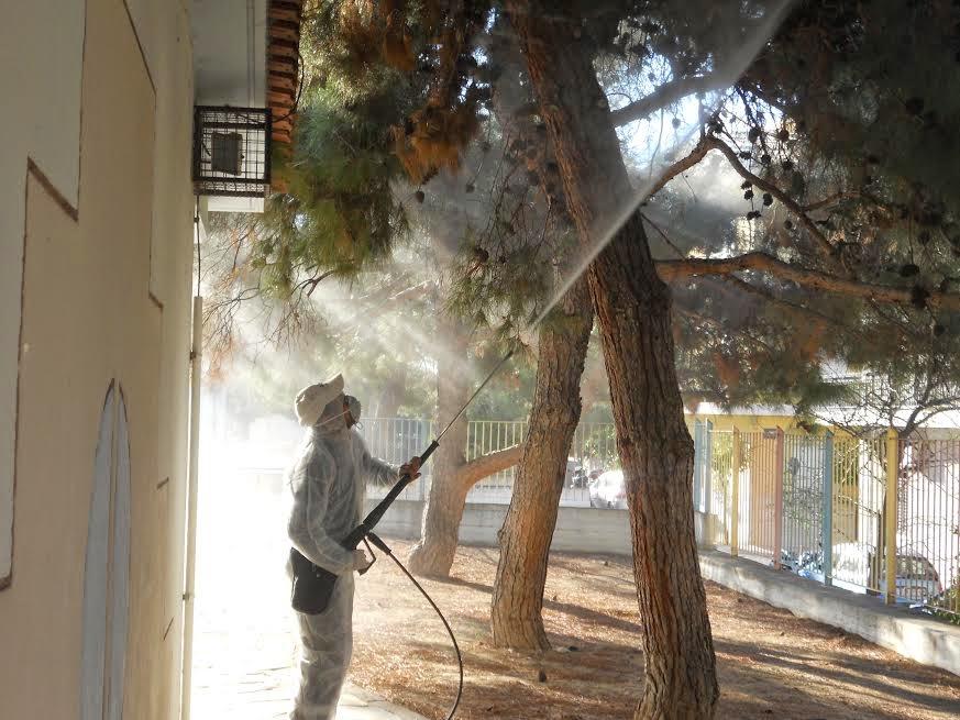 Αγία Βαρβάρα : Ψεκασμός για την καταπολέμηση της πυτιοκάμπης