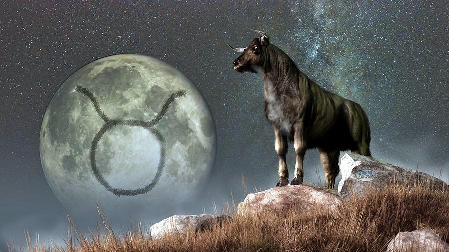 Horoscop noiembrie 2014 - taur