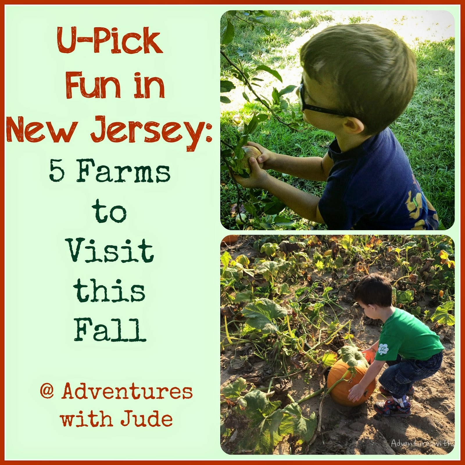 Pick Your Own Farms in south NJ