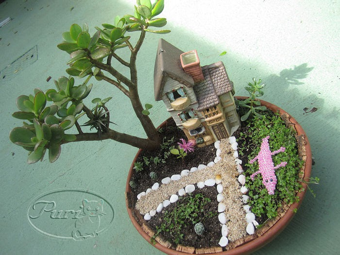Mis manualidades y aficiones jardin en miniatura la for Manualidades para jardin