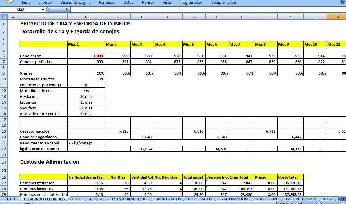 Cria y engorda de conejos agroproyectos proyectos for Proyecto de crianza de truchas pdf