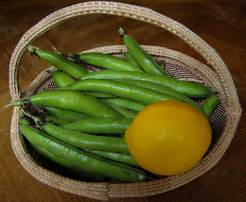 Green Fava Beans and Yellow Lemon in Basket
