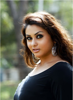Latest Hot Actress Namitha HQ Wallpapers picture photos