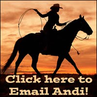 Email Andi