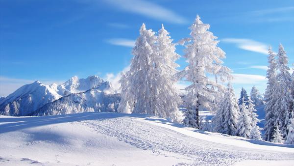 Pregatiri de iarna
