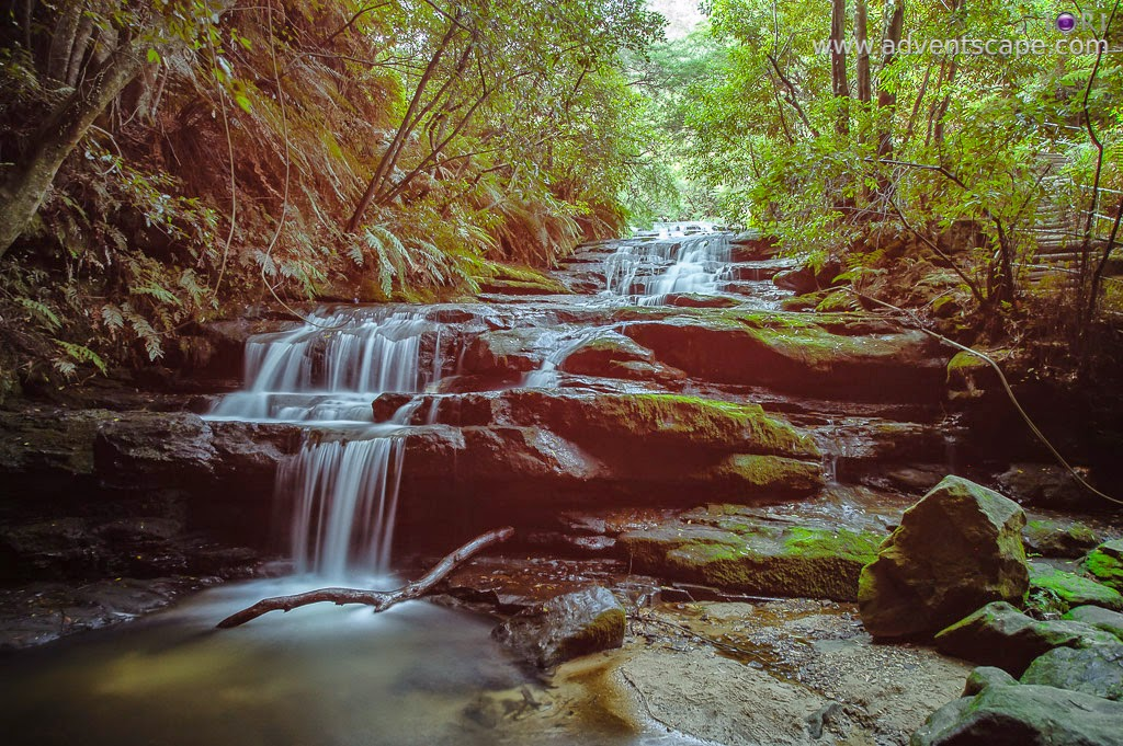 Philip Avellana, Australian Landscape Photographer, Leura Cascades, Leura, Blue Mountains, NSW, New South Wales, Australia, landscape, places to visit, waterfalls, nature