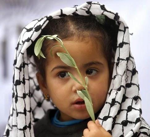 Criança palestina e o ramo de oliveria da paz