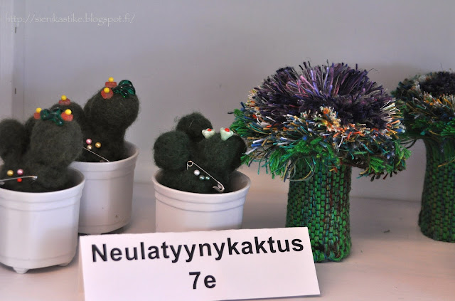 neulatyynykaktus, needle pillow cactus