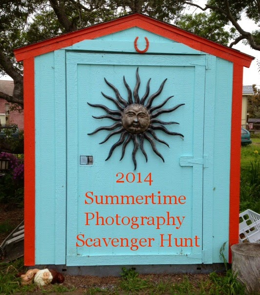 2014 Summertime Photography Scavenger Hunt