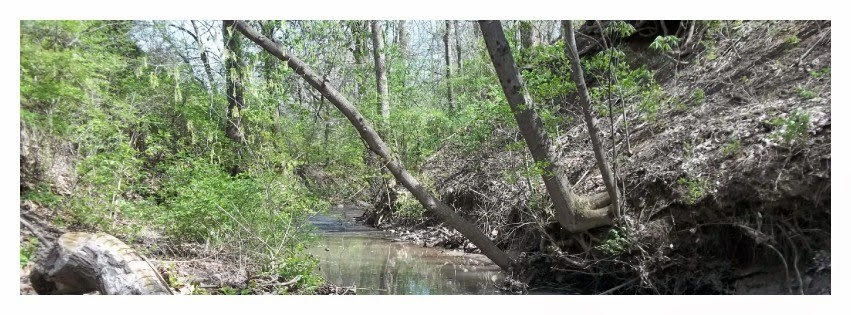Creek Image for Twitter or Facebook Header Spring Scene for Download.