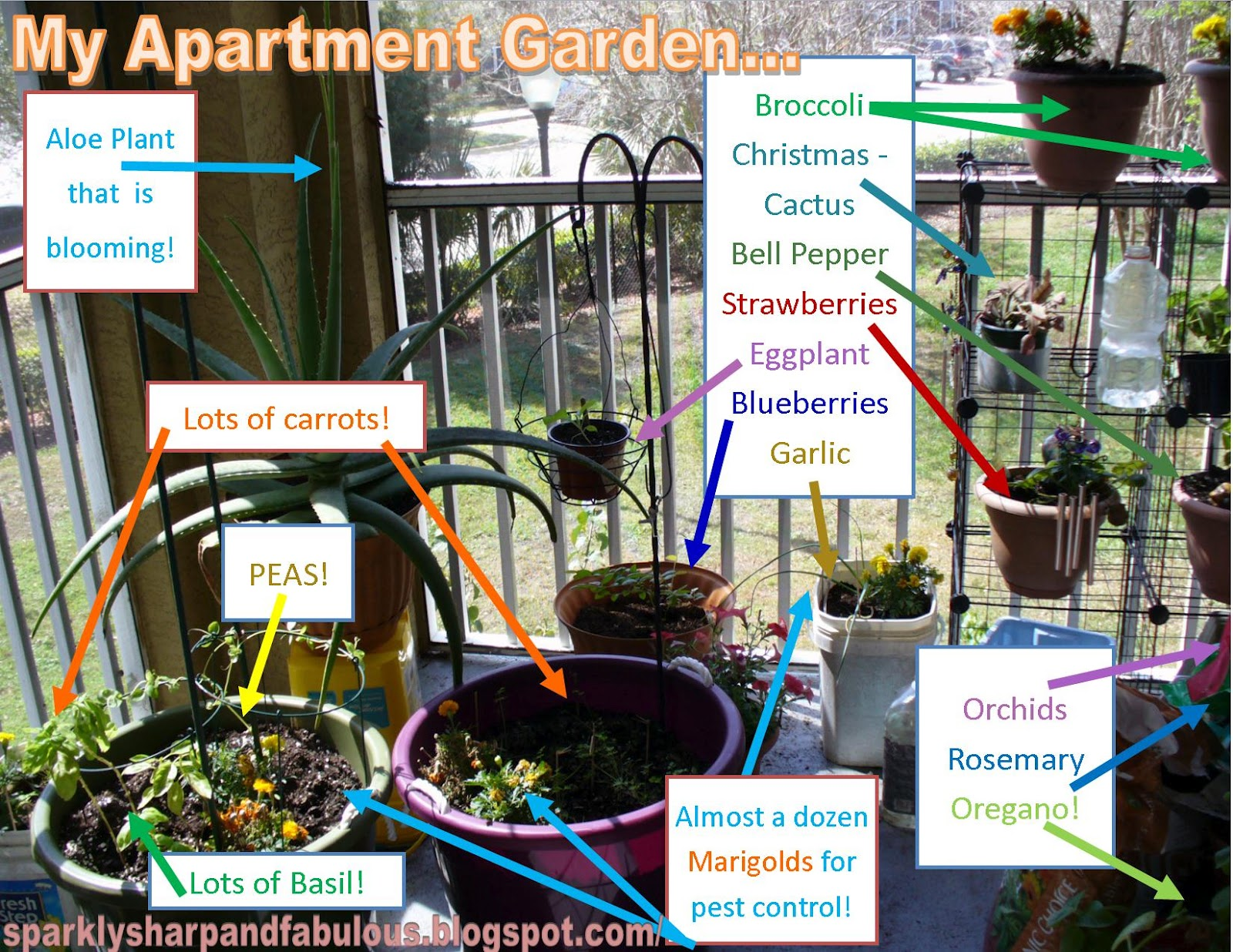 Garden Design Garden Design with Apartment Vegetable Garden on
