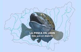 Asociación PescaLeón