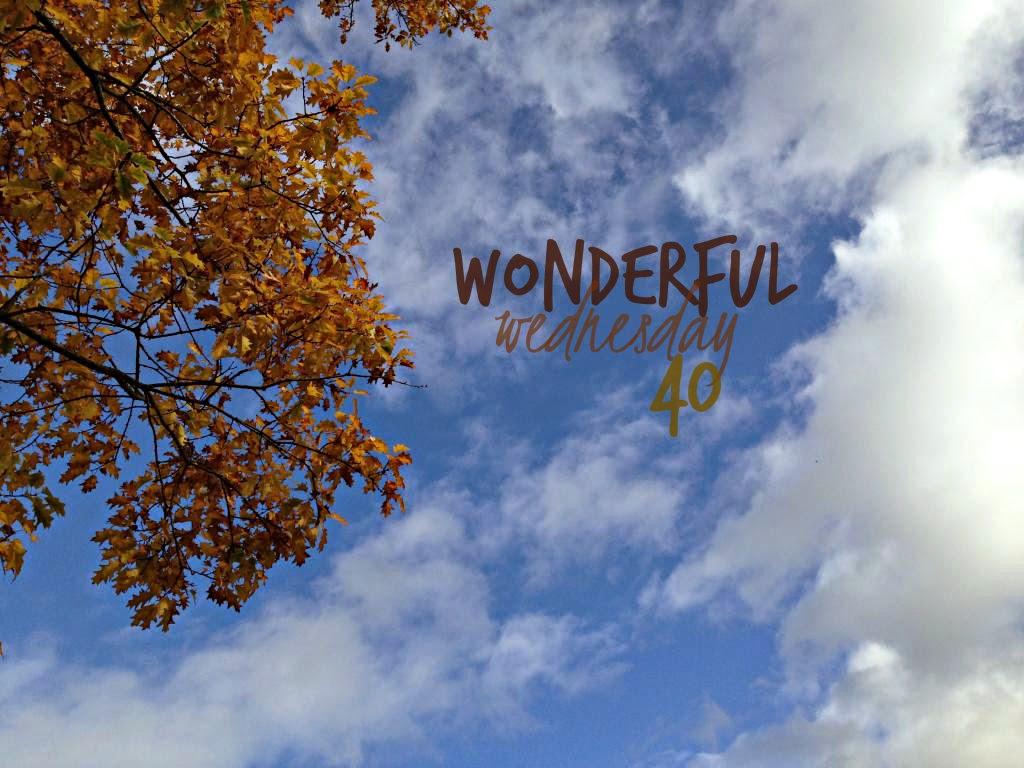 Wonderful Wednesday #40