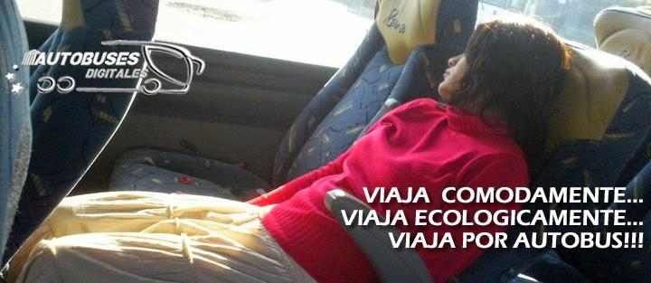 Pasion por el autobus