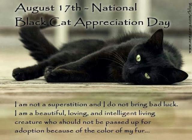 http://www.adoptapet.com/cat-adoption