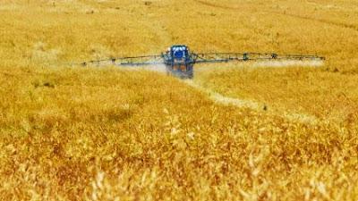 Μειώνει τα πρότυπα φυτοπροστασίας η ΕΕ