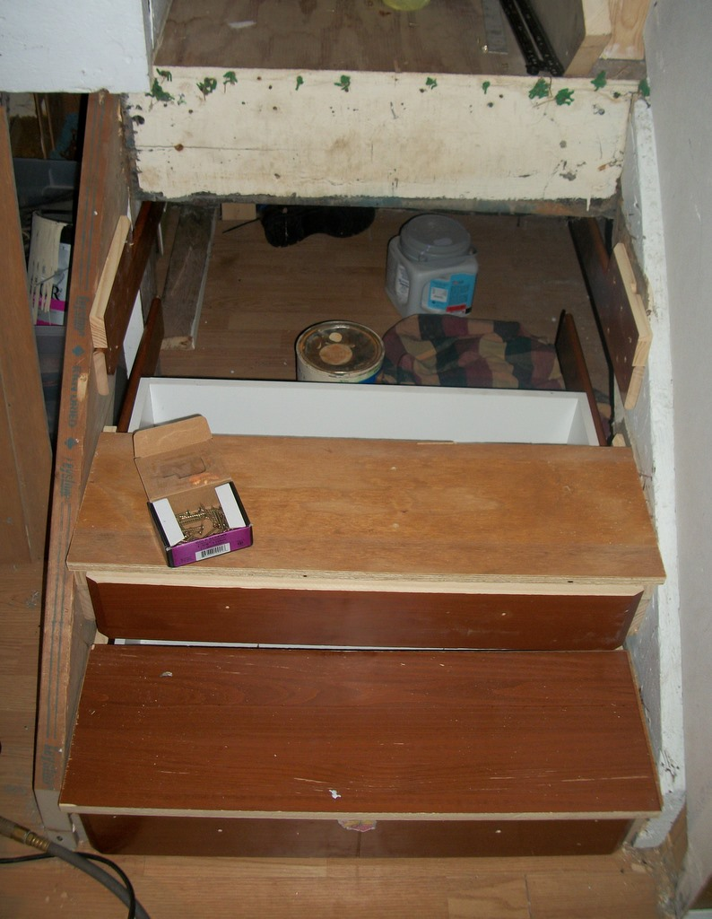 Basement Steps Secret Storage