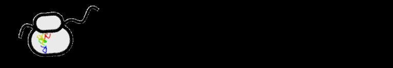 El rincón de Marco