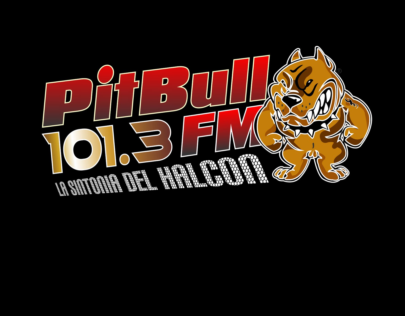 FM  PITBULL  101.3
