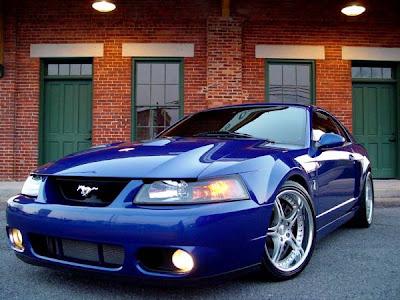 04 Mustang Cobra