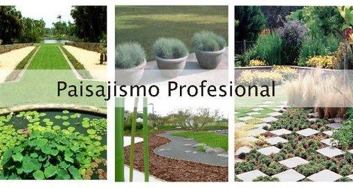 Curso de paisajismo profesional en el instituto palladio for Curso paisajismo