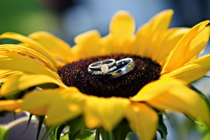 sunflower wedding ring photo