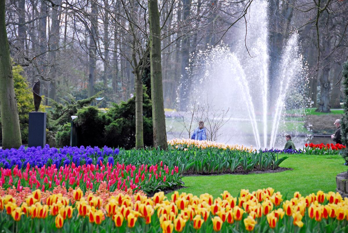 Imagenes ethel imagenes de jardines y lugares mas for Jardines bellos fotos