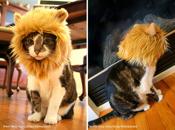 Lion Mane Costume for CatsCat Costume For Cats