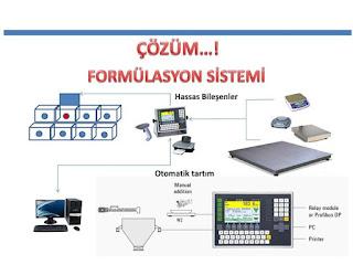 formülasyon sistemi